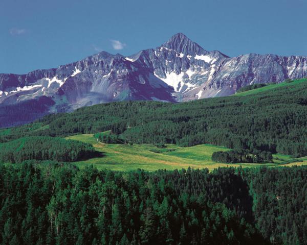 960 Wilson Way 16B, Telluride, CO 81435 (MLS #30373) :: Telluride Properties