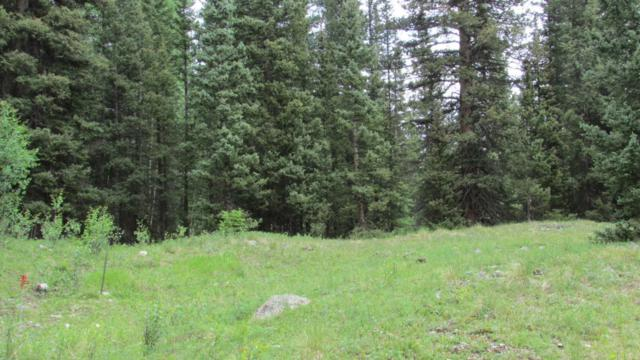 SITE 27 Backwoods, Ophir, CO 81426 (MLS #32632) :: Nevasca Realty