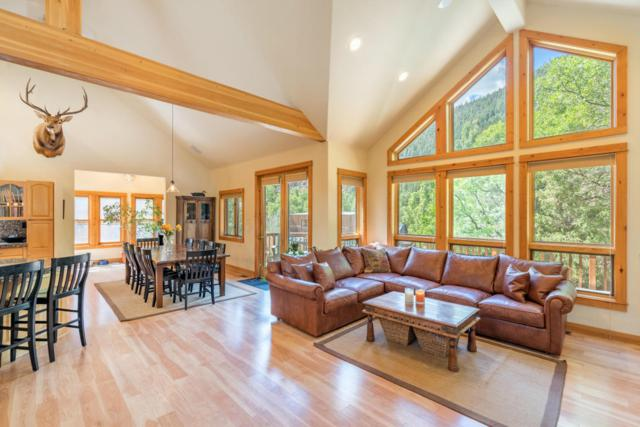 24 Red Cliff Road, Placerville, CO 81430 (MLS #33298) :: Telluride Properties