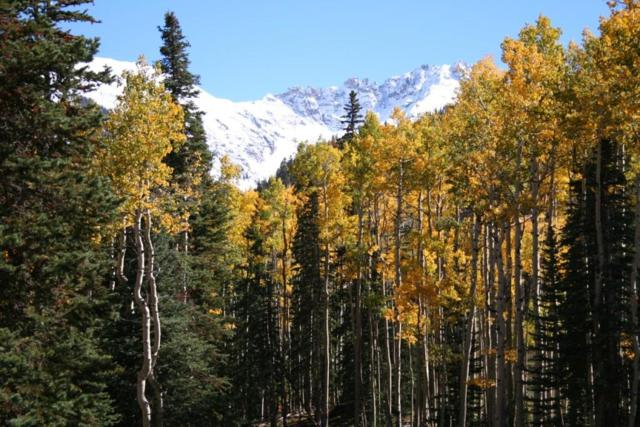Lot 3 Cortina Drive #3, Mountain Village, CO 81435 (MLS #33316) :: Telluride Properties