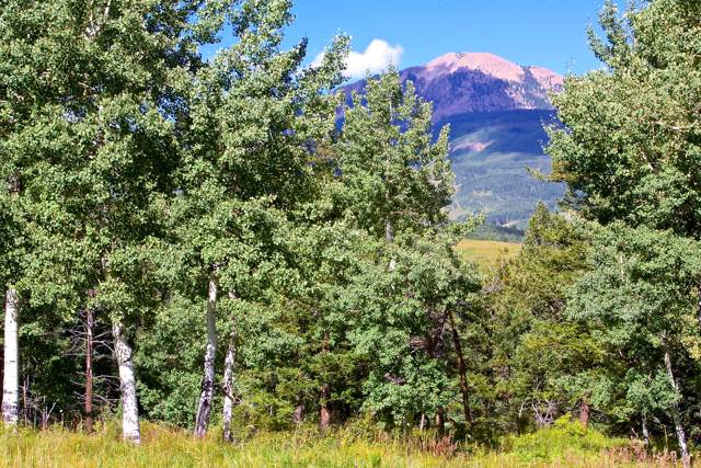 TBD Waggoner Road #59, Placerville, CO 81430 (MLS #34226) :: Telluride Properties