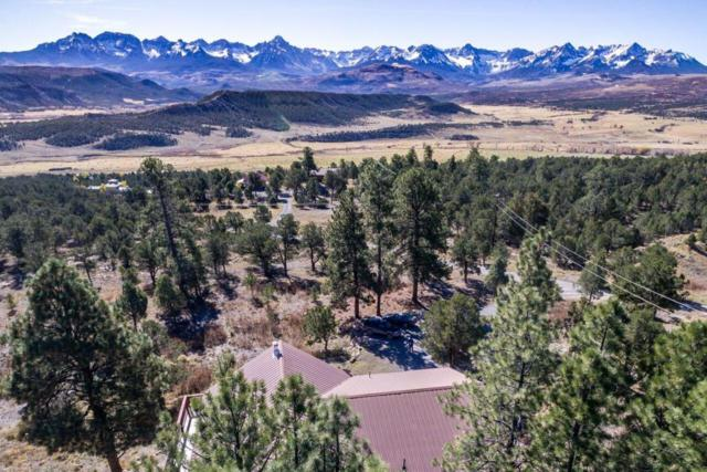 1258 Catamount Drive, Ridgway, CO 81432 (MLS #34468) :: Telluride Properties