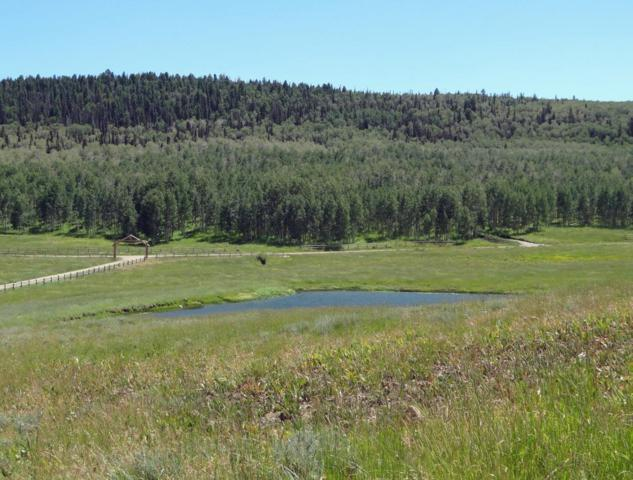 10C Spruce Mountain Lane, Ridgway, CO 81432 (MLS #34821) :: Nevasca Realty