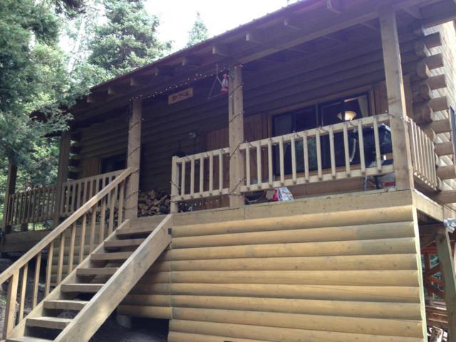 4756 San Juan Vista Drive, Placerville, CO 81430 (MLS #34880) :: Telluride Properties