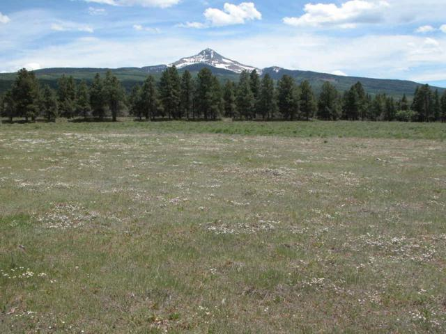 Parcel D 44Zs Road D, Norwood, CO 81423 (MLS #35054) :: Nevasca Realty