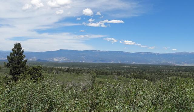TBD Spruce Mountain Lane, Ridgway, CO 81432 (MLS #35073) :: Telluride Properties