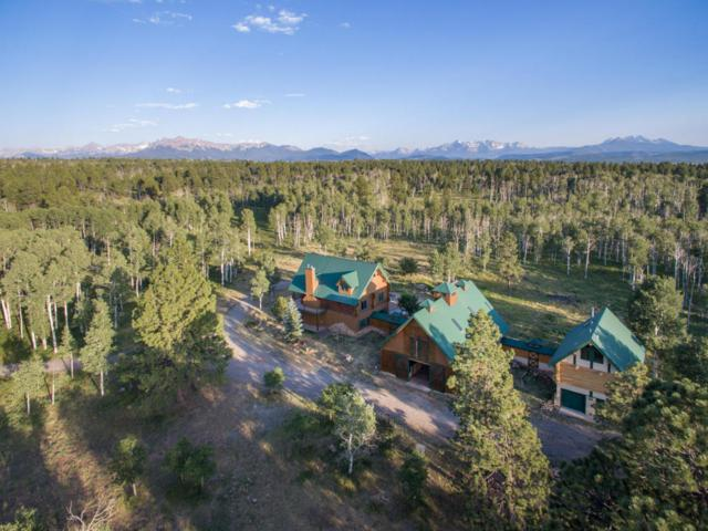 6670 Mckenzie Springs Road, Placerville, CO 81430 (MLS #35091) :: Telluride Real Estate Corp.