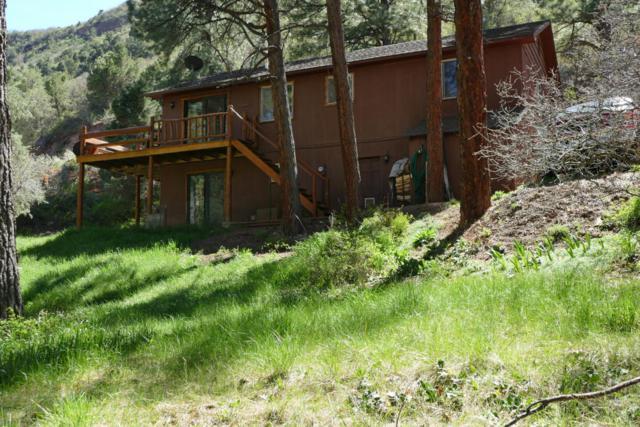 336 Pine Ridge Drive, Ridgway, CO 81432 (MLS #35181) :: Nevasca Realty
