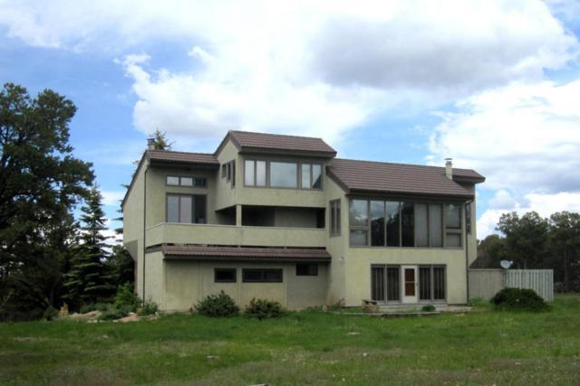 296 Tower Road S, Ridgway, CO 81432 (MLS #35195) :: Telluride Properties