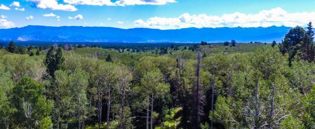 Lot 7  455 Black Bear Trail, Ridgway, CO 81432 (MLS #35277) :: Telluride Properties