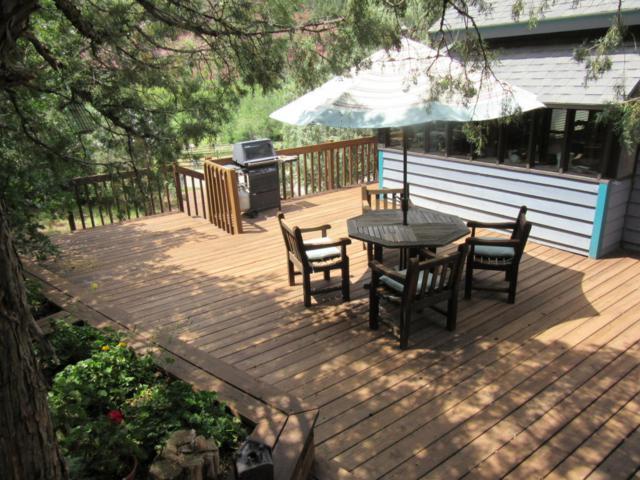 191 Trunk Road, Placerville, CO 81430 (MLS #35308) :: Telluride Properties