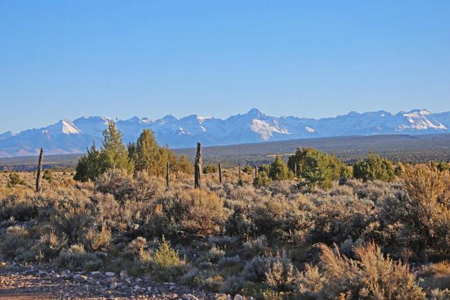 TBD Sims Mesa Road, Montrose, CO 81403 (MLS #35417) :: Telluride Properties