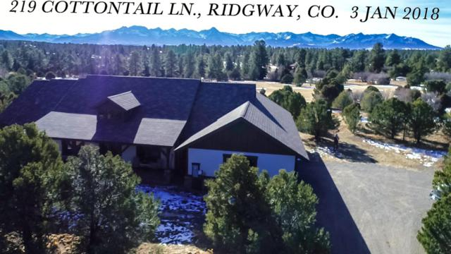 219 Cottontail Lane, Ridgway, CO 81432 (MLS #35566) :: Nevasca Realty