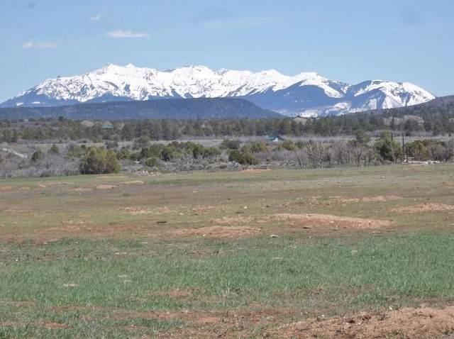 tbd County Rd V44 E #21, Norwood, CO 81423 (MLS #35666) :: Telluride Properties