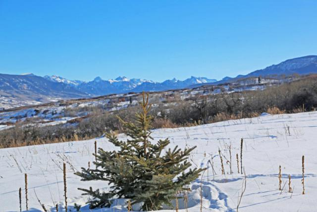 22231 P77 Road, Out Of Area, CO  (MLS #35688) :: Telluride Properties