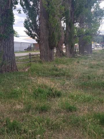41923 Highway 145, Norwood, CO 81423 (MLS #35692) :: Telluride Standard