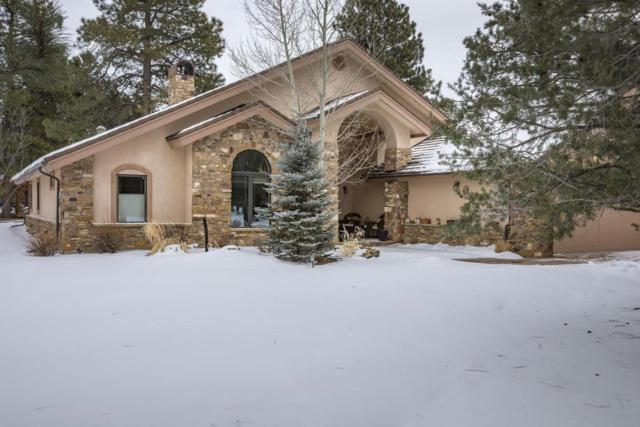 109 Pronghorn Lane, Ridgway, CO 81432 (MLS #35738) :: Telluride Real Estate Corp.