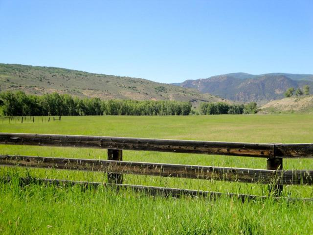 TBD Gray Ranches, Montrose, CO 81401 (MLS #35779) :: Telluride Properties