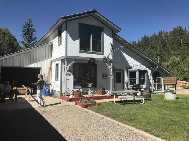 3501 Highway 62, Placerville, CO 81430 (MLS #35874) :: Telluride Properties