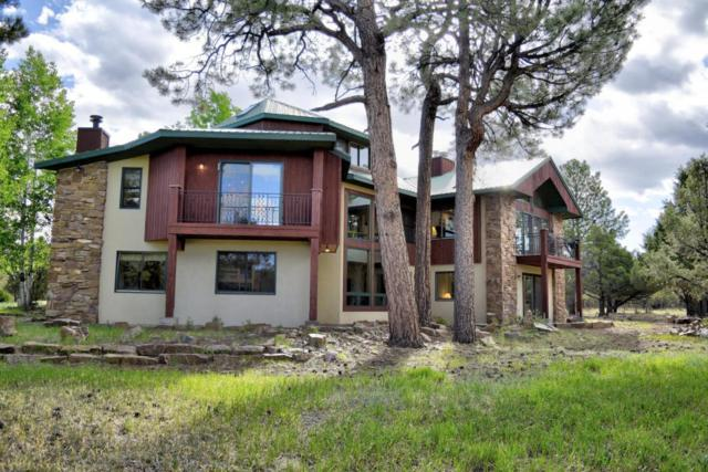 32 Woodchuck Place, Ridgway, CO 81432 (MLS #36007) :: Telluride Real Estate Corp.