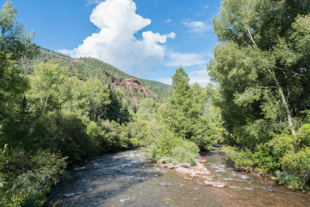 TBD Fall Creek Road #23, Placerville, CO 81430 (MLS #36048) :: Telluride Properties