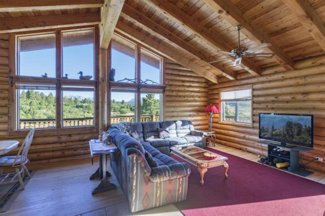 1735 High Bluff Drive, Placerville, CO 81430 (MLS #36067) :: Telluride Properties