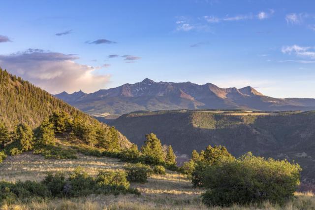 100 Hidden Bear Road 1, 2 & 3, Placerville, CO 81430 (MLS #36121) :: Telluride Properties