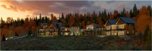 TBD Hang Glider Drive 243AR & 243BR, Mountain Village, CO 81435 (MLS #36183) :: Nevasca Realty
