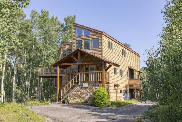 151 Beaver Pond Lane, Telluride, CO 81435 (MLS #36294) :: Nevasca Realty