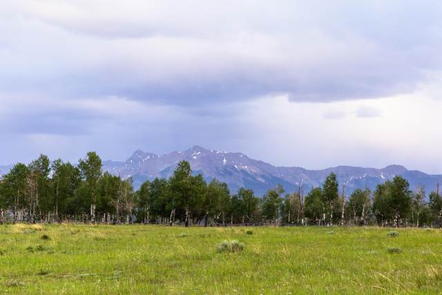 TBD Frontier Road C, Placerville, CO 81430 (MLS #36426) :: Telluride Real Estate Corp.