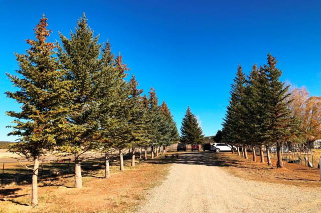1448 Co Rd 46X, Norwood, CO 81423 (MLS #36547) :: Telluride Real Estate Corp.