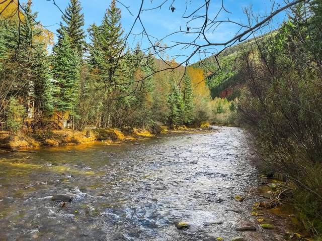 TBD River Trail Lot #41R, Placerville, CO 81430 (MLS #36608) :: Telluride Real Estate Corp.