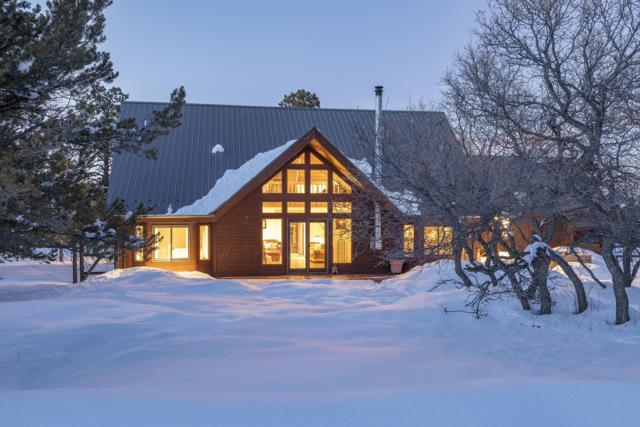 1010 Canyon Drive, Ridgway, CO 81432 (MLS #36711) :: Telluride Properties
