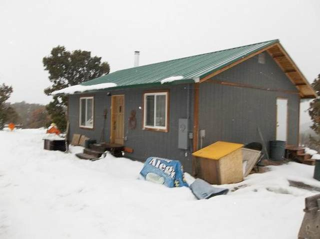1249 Ragsdale Road, Norwood, CO 81423 (MLS #36746) :: Compass