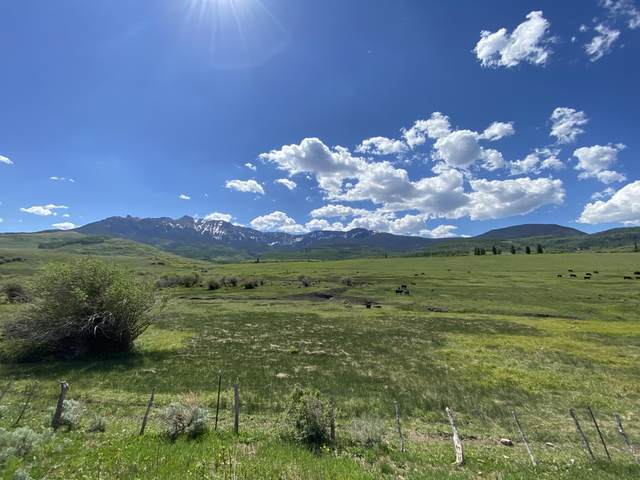 3170 San Juan Vista Road #55, Ridgway, CO 81430 (MLS #36749) :: Telluride Properties
