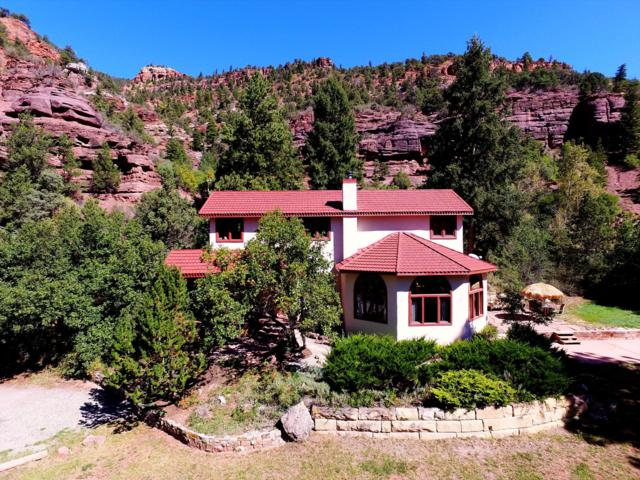 21726 Highway 145, Placerville, CO 81430 (MLS #36978) :: Telluride Properties