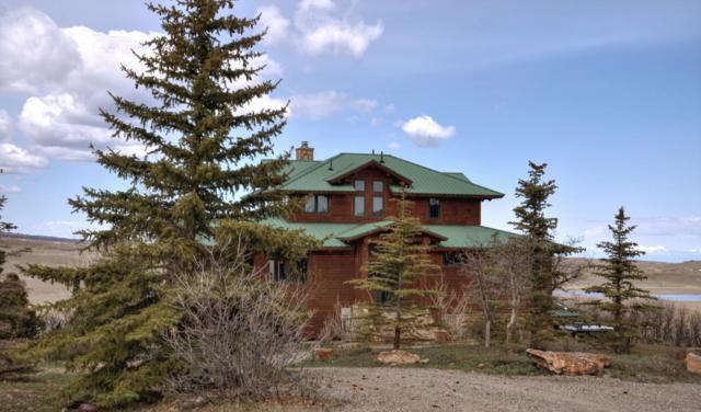 825 High Bluff Drive, Placerville, CO 81430 (MLS #37010) :: Telluride Properties
