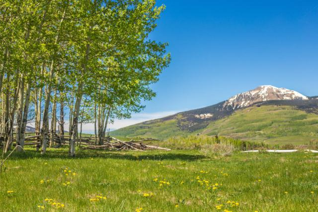 TBD Tract 25 Wilson Mesa Ranch #25, Placerville, CO 81430 (MLS #37074) :: Telluride Properties
