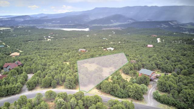 225 Oak Road #19, Ridgway, CO 81432 (MLS #37109) :: Telluride Properties