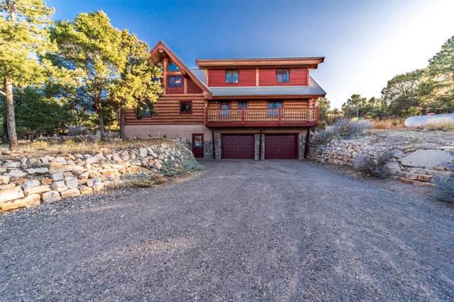 270 E Pinon Road, Ridgway, CO 81432 (MLS #37116) :: Telluride Properties