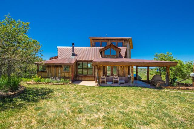 1291 Old Elam Ranch Road, Placerville, CO 81430 (MLS #37298) :: Telluride Properties