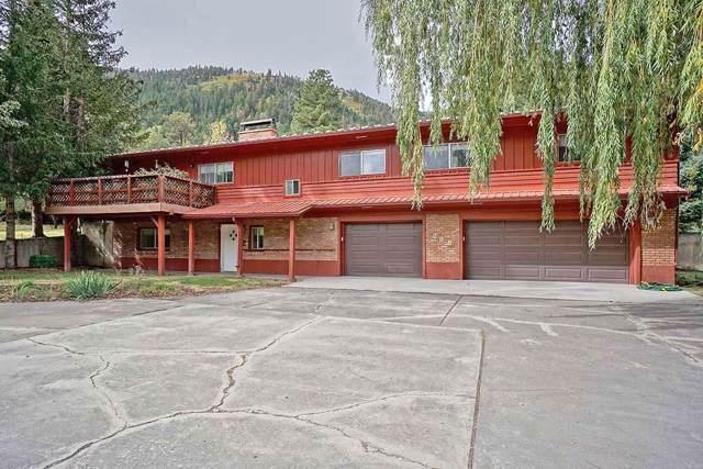 288 Marys Road, Ridgway, CO 81432 (MLS #37557) :: Coldwell Banker Distinctive Properties