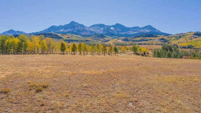 1050 Posey Road, Placerville, CO 81430 (MLS #37587) :: Telluride Properties