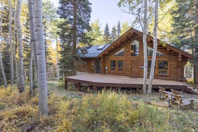 105 High Noon Lane, Telluride, CO 81435 (MLS #37588) :: Coldwell Banker Distinctive Properties