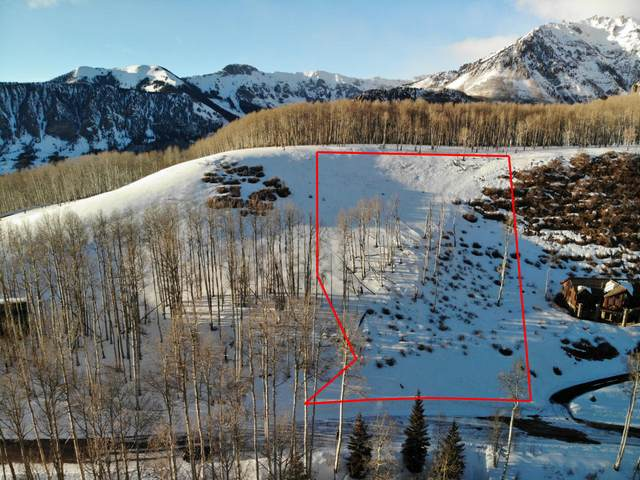 TBD W Serapio Drive #140, Telluride, CO 81435 (MLS #37681) :: Coldwell Banker Distinctive Properties