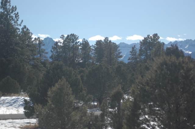 901 Ponderosa Drive C45, Ridgway, CO 81432 (MLS #37703) :: Telluride Properties