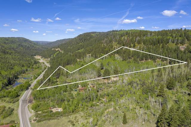 Lot 1 Sky Mountain Ranch Road, Placerville, CO 81430 (MLS #38170) :: Telluride Standard