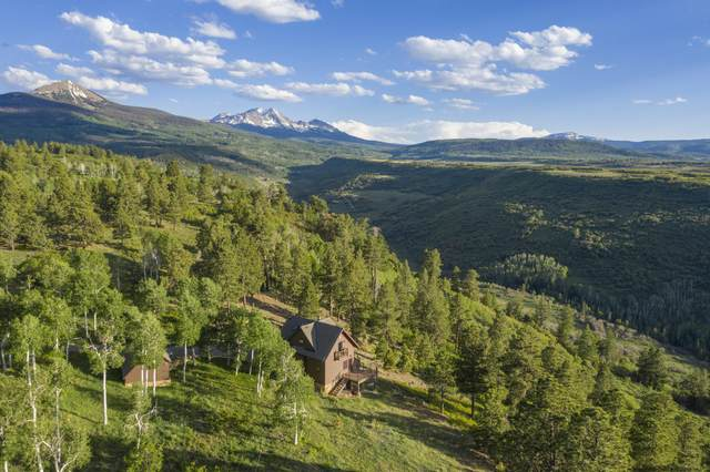 185 South Point Road, Placerville, CO 81430 (MLS #38246) :: Compass
