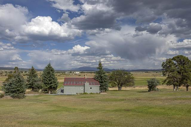 1605 Co Rd Z42, Norwood, CO 81423 (MLS #38343) :: Telluride Real Estate Corp.