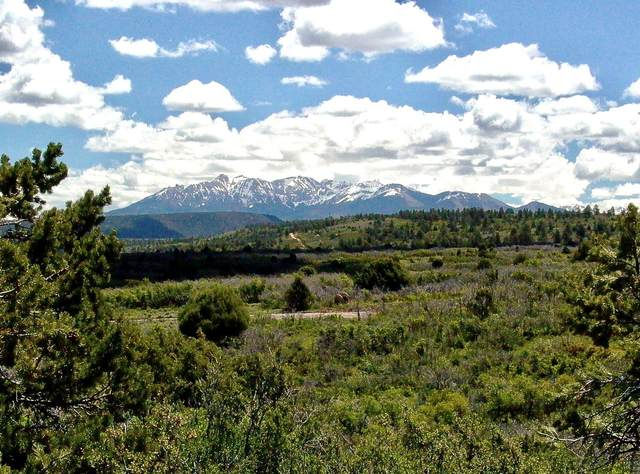 Lot 10 North Reserve Drive #10, Norwood, CO 81423 (MLS #38344) :: Telluride Real Estate Corp.